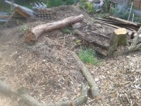 Some woodchip,and some more logs